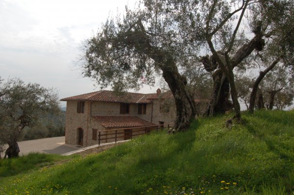 bed and breakfast perugia,MilleSoli